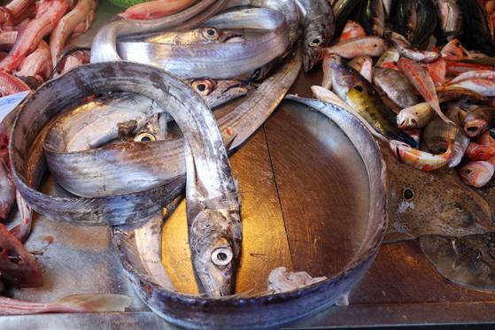 Marché de Syracuse, le poisson sabre
